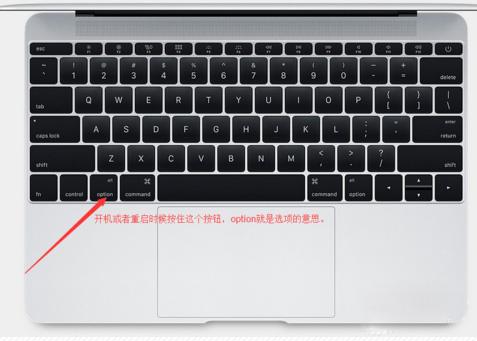 苹果BIOS设置界面1.jpg